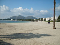 The great Beach of Alcudia (Mallorca)