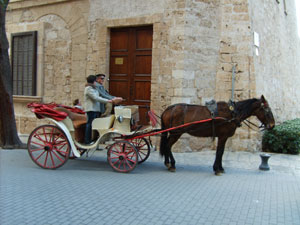 A Coach with two horses in Palma